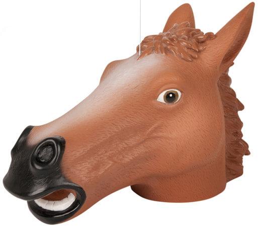 Eichhörnchen Futterstation Pferdekopf