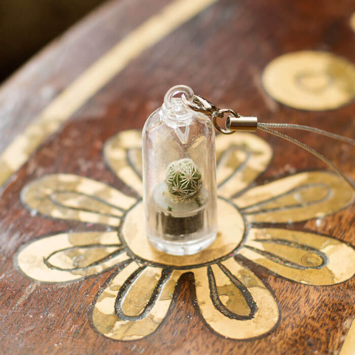 Kaktus Schlüsselanhänger