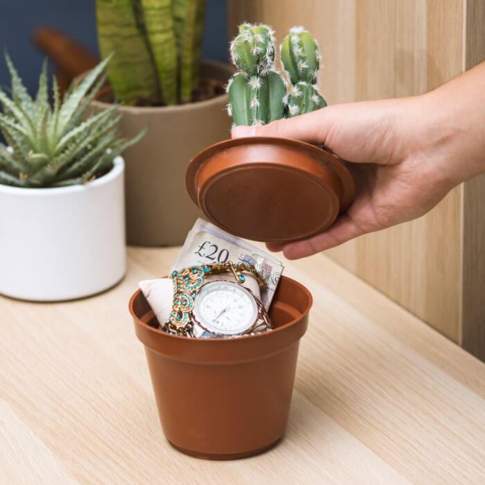 Kaktus Tresor