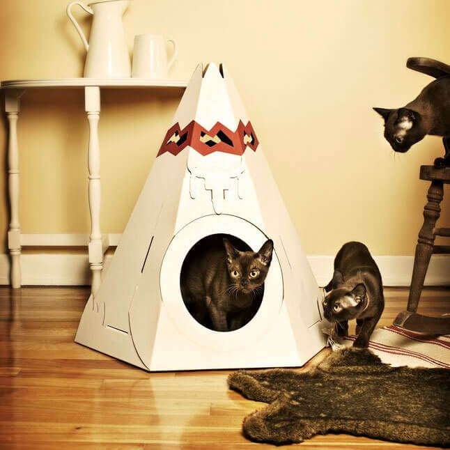 Teepee Cat Play House