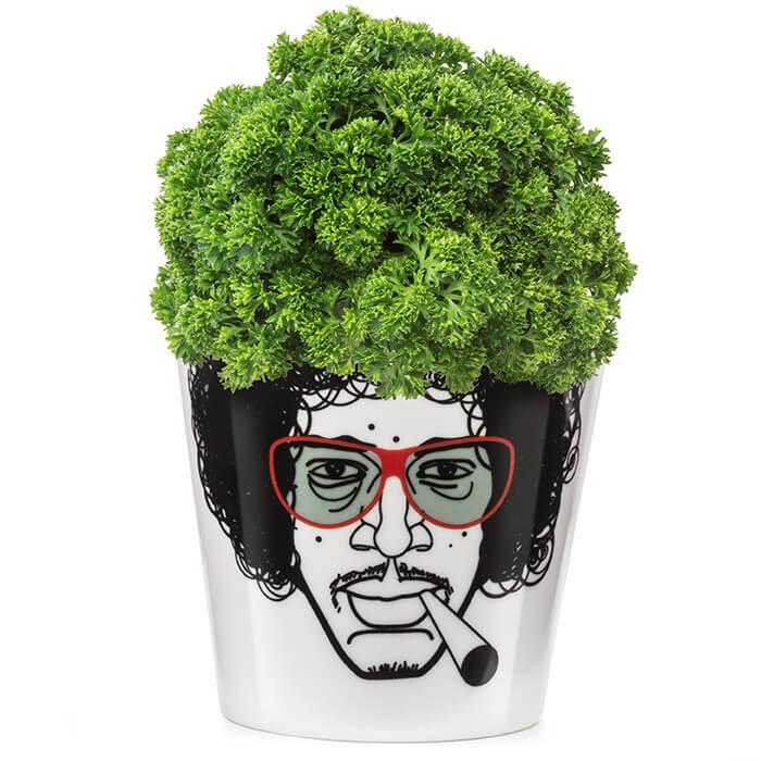 Herbal Jimmy Flower Pot