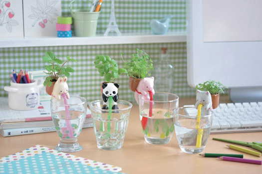 Chuppon Drinking Animal Planters