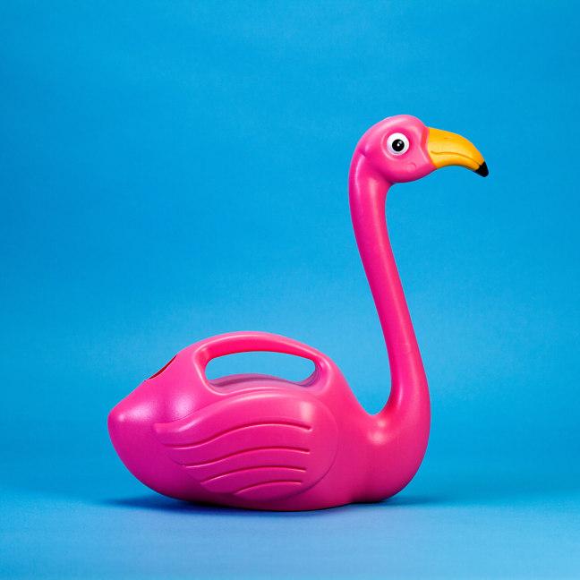 Giesskanne Flamingo