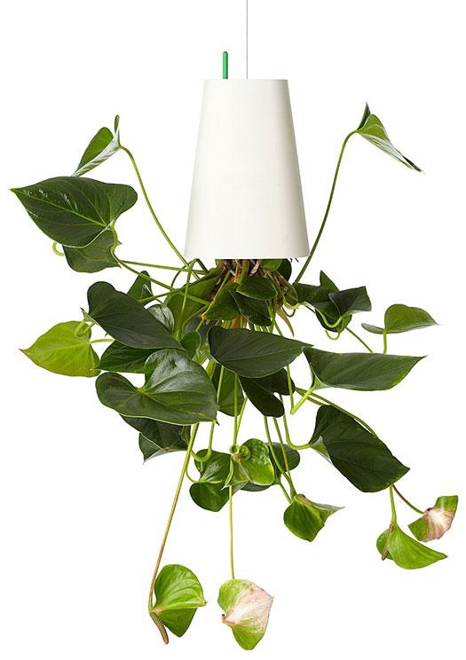 Sky Planter Blumentopf auf dem Kopf