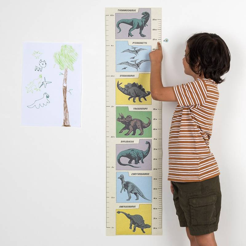 Prehistoric Land Height Chart