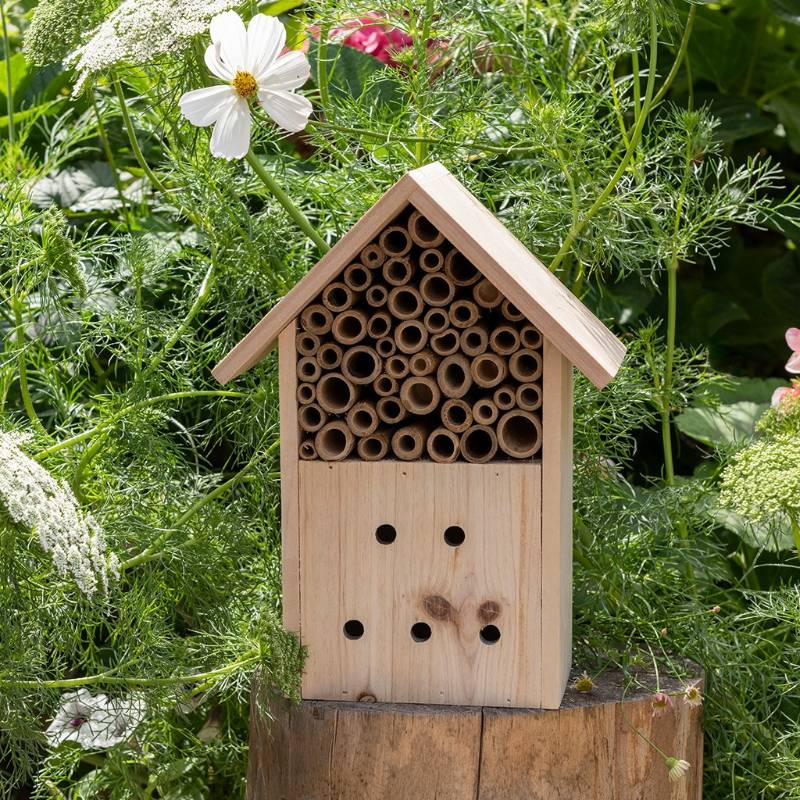Wonders Of Nature Insect Hotel
