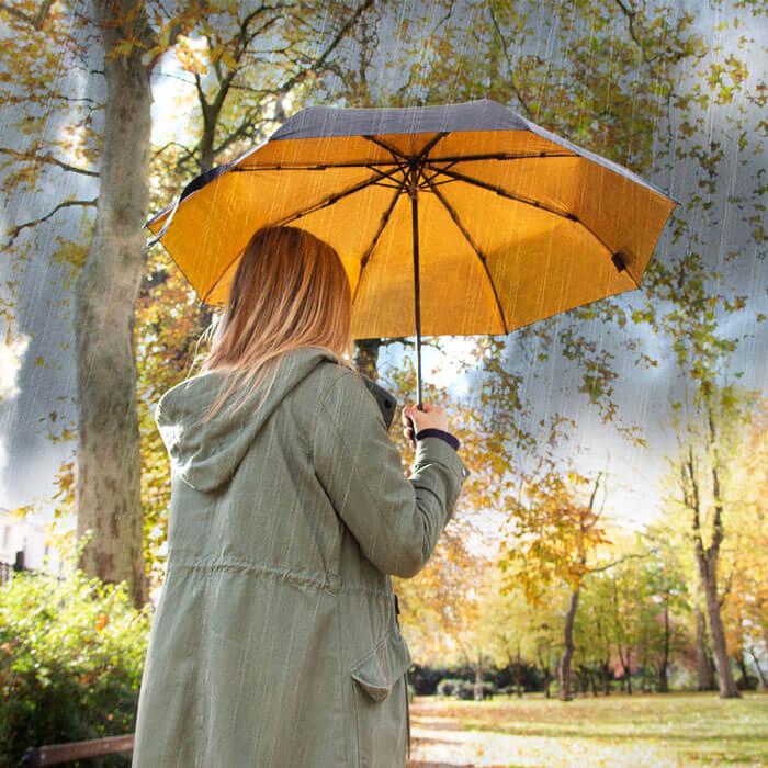 Black and Gold Umbrella