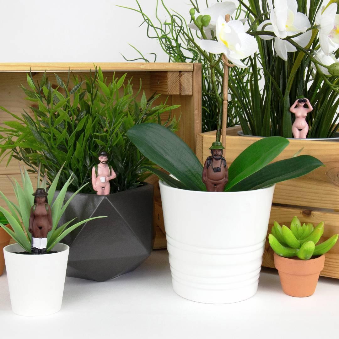 Plant Pot Mini Naked Ramblers