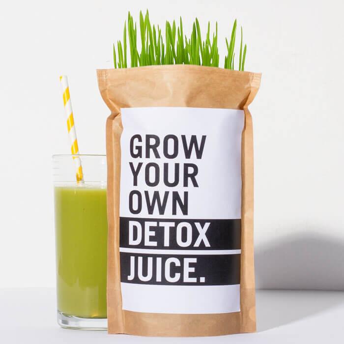 Grow Your Own Detox Juice