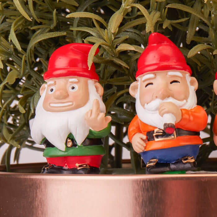 Mini Plant Pot Naughty Gnomes