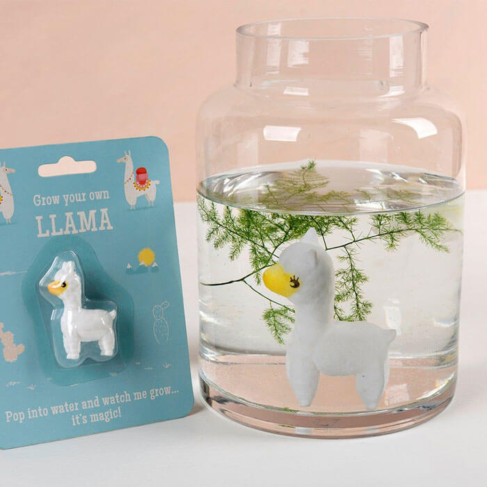 Grow Your Own Llama