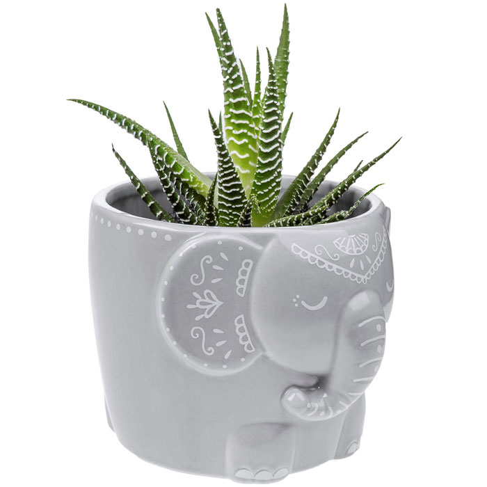 Mandala Elephant Large Planter