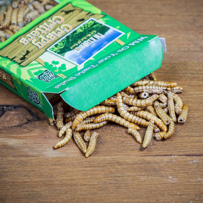 Barbecue Mealworms
