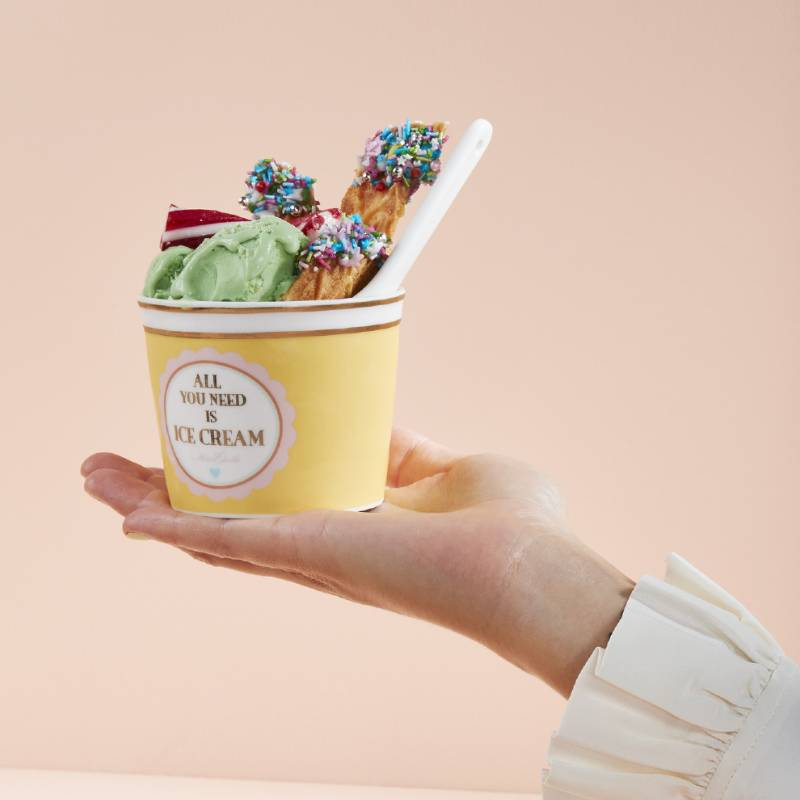 All You Need Is Ice Cream Set