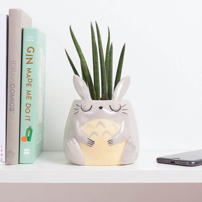 Cache-Pot Totoro