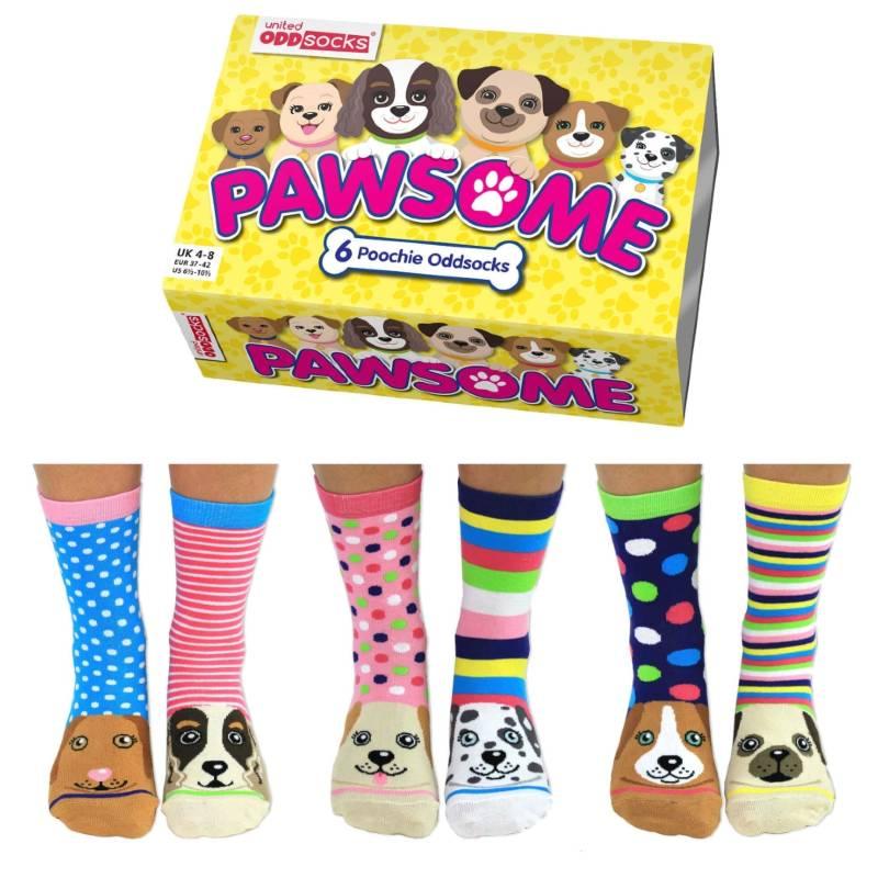 Pawsome Sock Gift Set