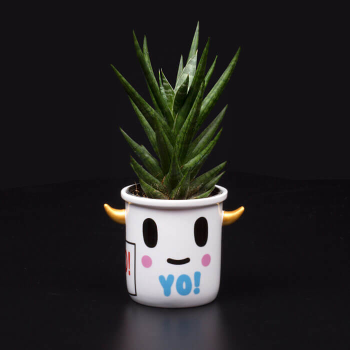 Tokidoki Yo Ceramic Planter