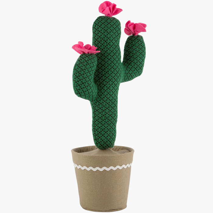 Kaktus Türstopper