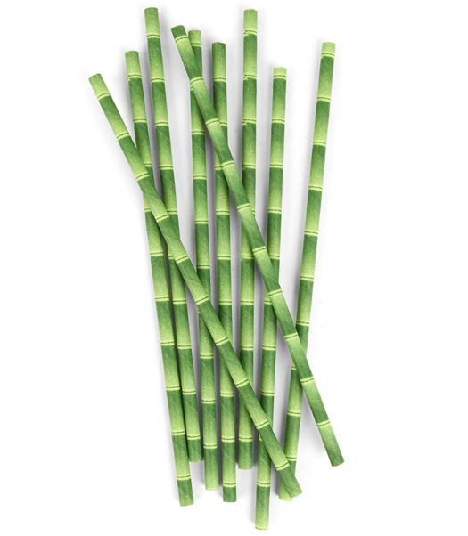 Biodegradable Paper Straws Bamboo