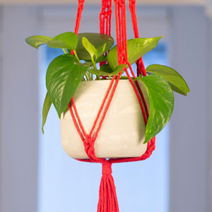 Red Macrame and Cement Planter