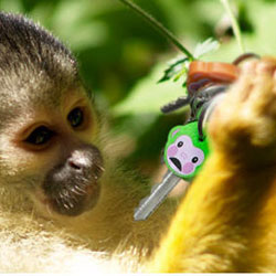 MONKEYS - Keychain Covers Identifiers
