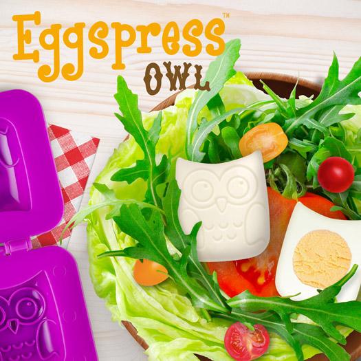 Eggspress Owl