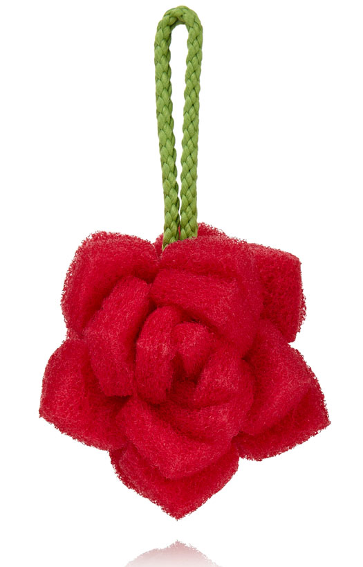 Mini Red Rose Body Polisher