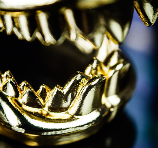 Shark Jaw Bottle Opener