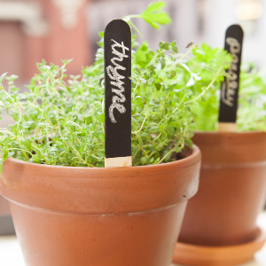 Reusable Garden Markers