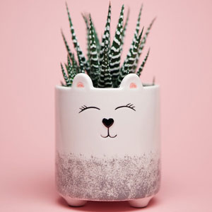 Little Bear Planter