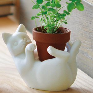 Self Watering Plant Pot Cat