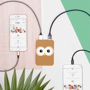 Power Bank Owl
