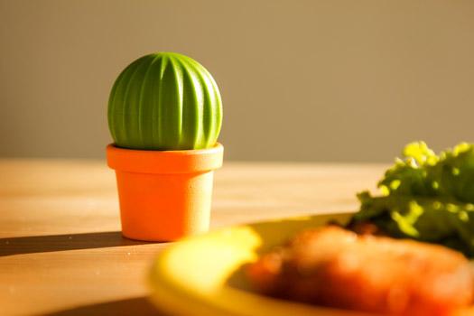 Salz & Pfeffer Streuer Kaktus