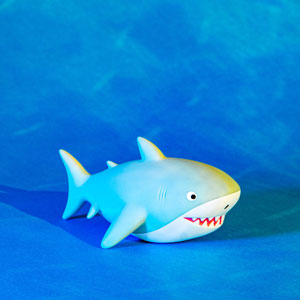 Shelby The Shark Night Light