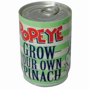 Popeye - Grow Your Own Spinach