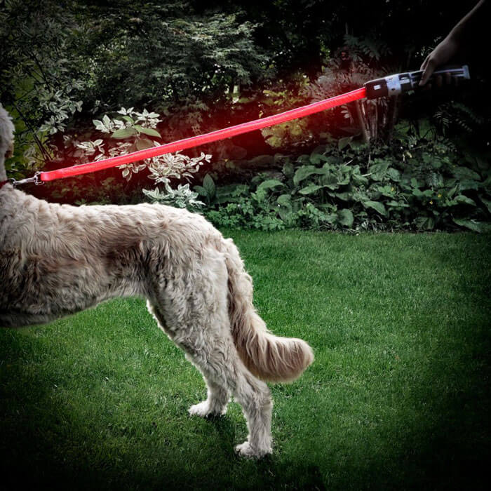 Star Wars Lightsaber Dog Leash