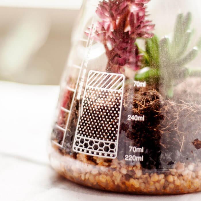 Erlenmeyerkolben Pflanzenterrarium Set