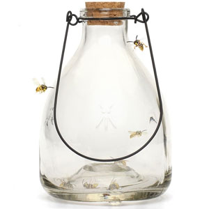 Wasp Trap Set