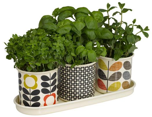 pots pour herbes aromatiques orla kiely gadgets et cadeaux originaux. Black Bedroom Furniture Sets. Home Design Ideas