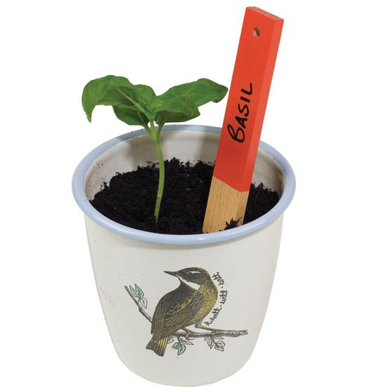 Pflanzenmarkierer 8er Set